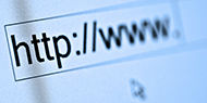 Internet Domain Names Disputes: Principles and Practice